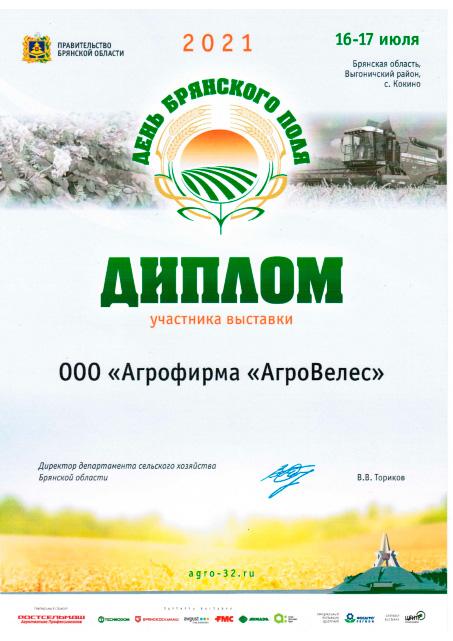 Диплом от правительства Брянской области